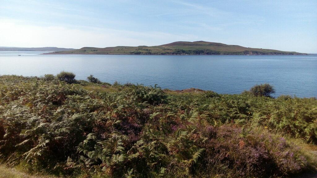 encounter with a reptilian ritual in western scotland