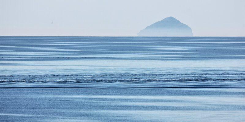reptilian encounters in the northern sea of scotland